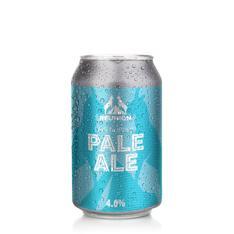Air Supply Pale Ale