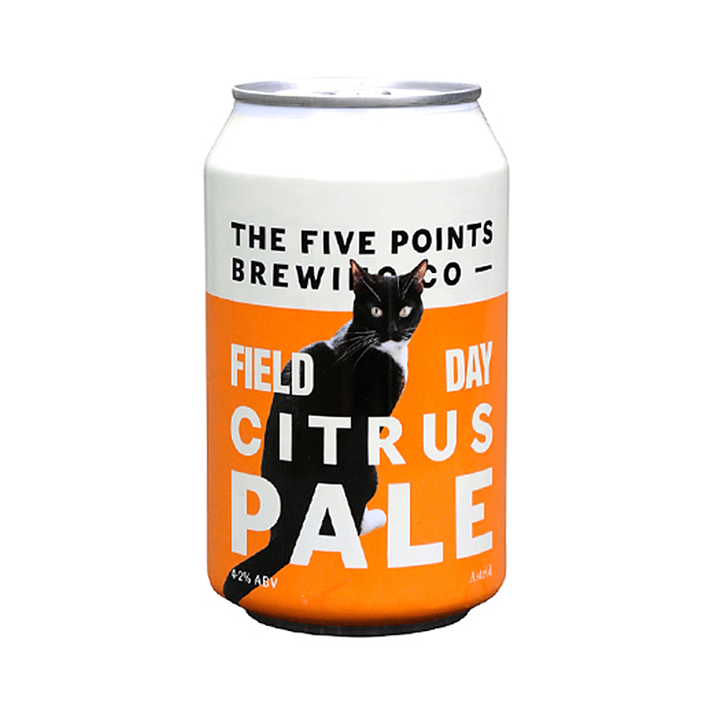 Field Day Citrus Pale by Five Points Brewing Co