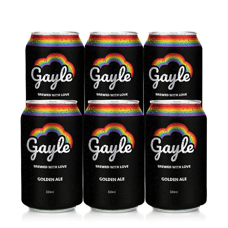 Ale 6 Case by Gayle Brewery
