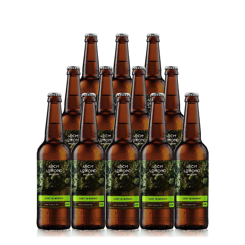 Lost In Mosaic 12 case