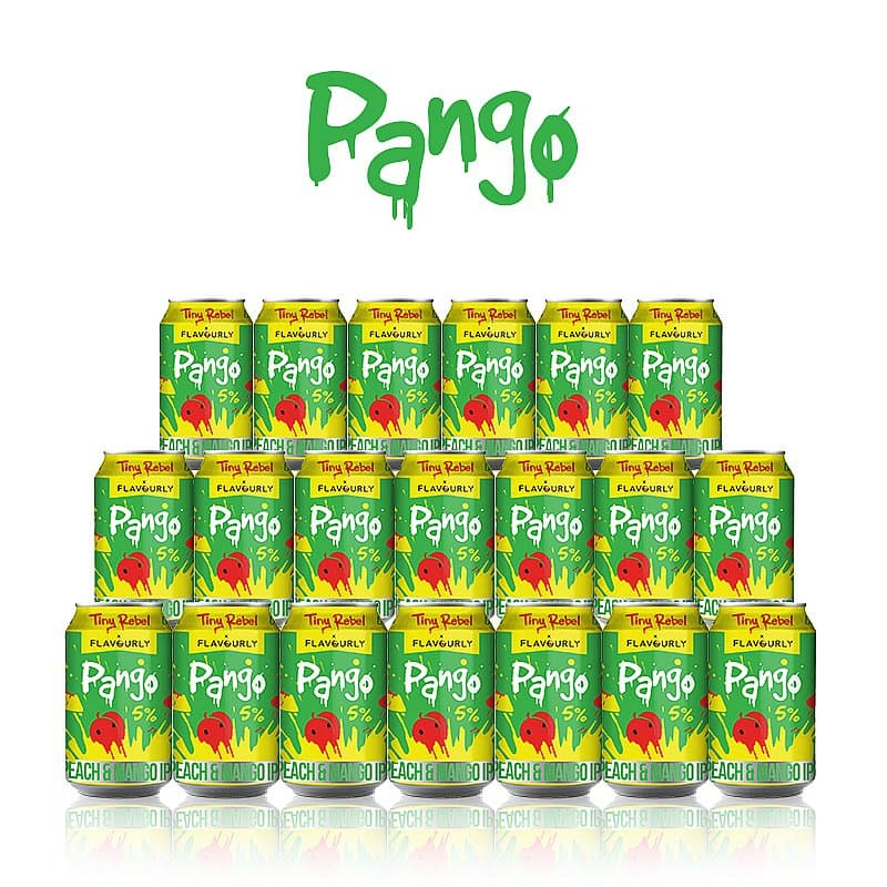 Pango 20 Case by Tiny Rebel x Flavourly