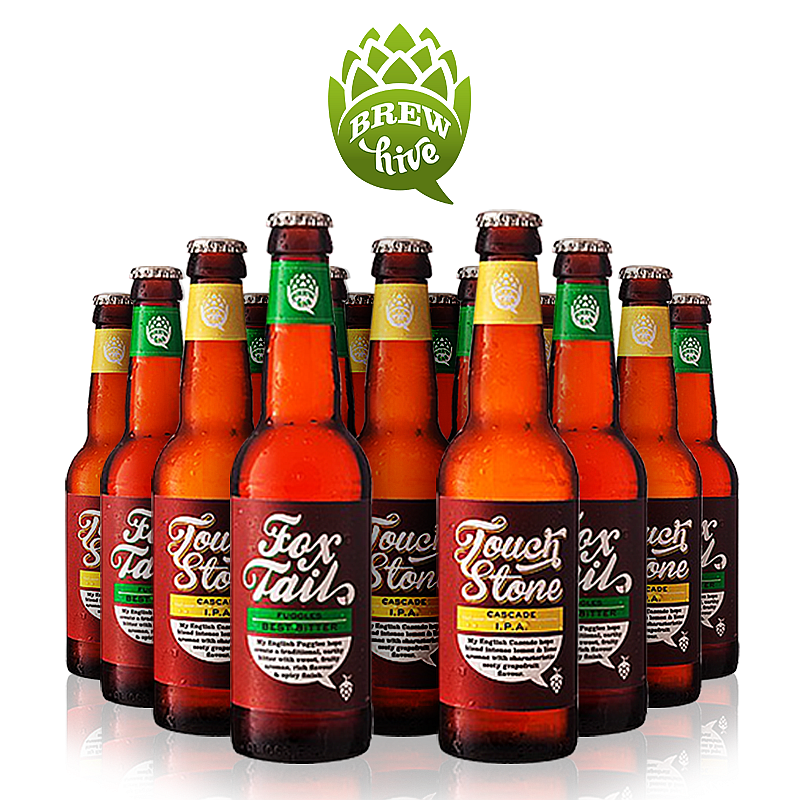 Touch Stone/Fox Tail (Mixed 24 Pack) by Brewhive X Hilden