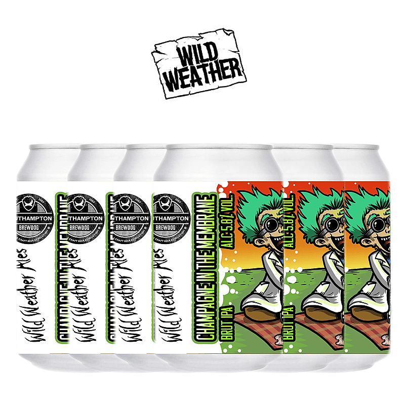 Champagne in the Membrane 6 Case by Wild Weather Ales