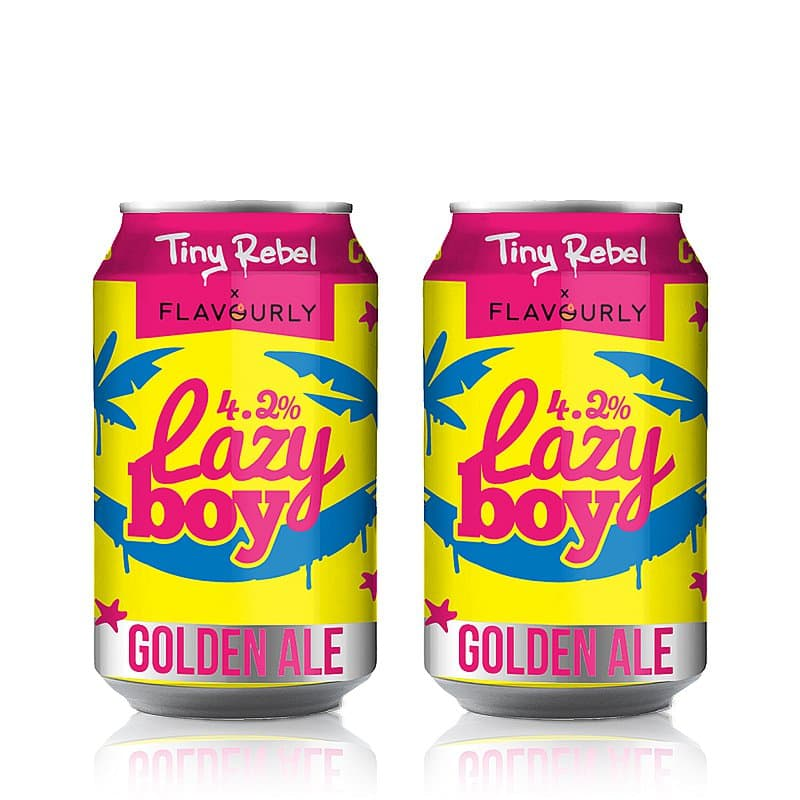 Lazy Boy Twin Pack by Tiny Rebel x Flavourly