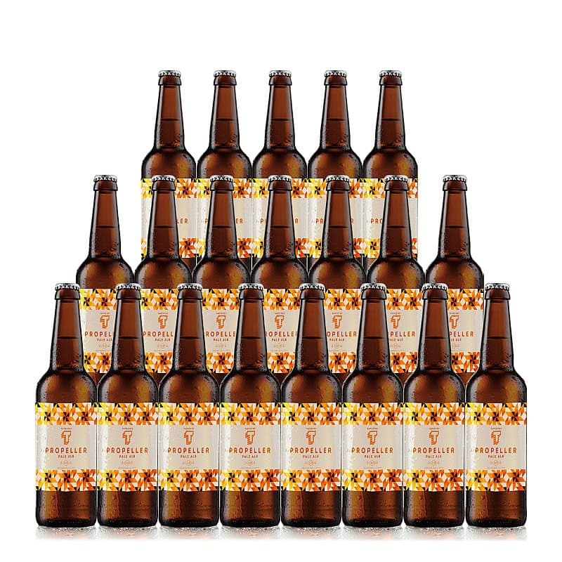Pale Ale 20 Case by Tapestry Brewery