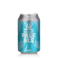 Air Supply Pale Ale by Reunion Ales